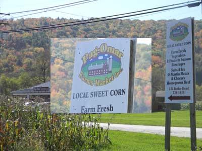 Pine Creek Rail Trail Mile By Mile Guide